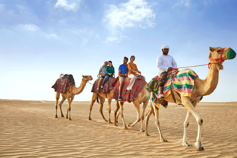Дубай культура сколько стоит купить остров на мальдивах